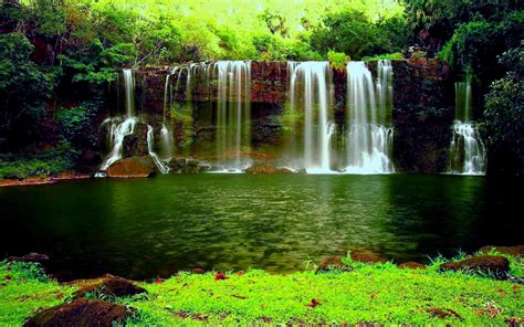 Waterfall In The Thick Green Forest River Pond Weed Hd