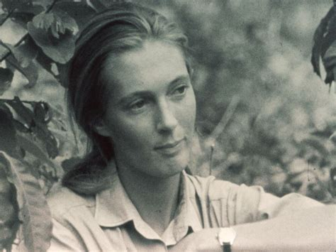 About Jane - The Jane Goodall Institute