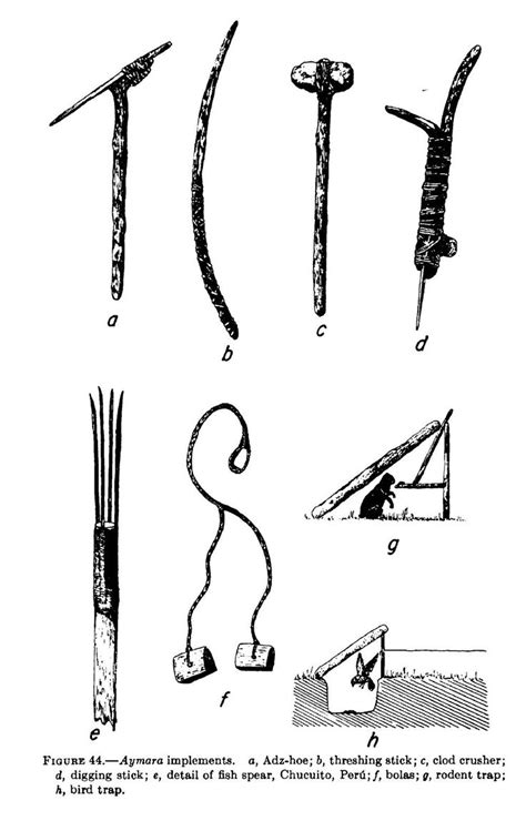 Image result for arawak tribe made spear | Hunting tools