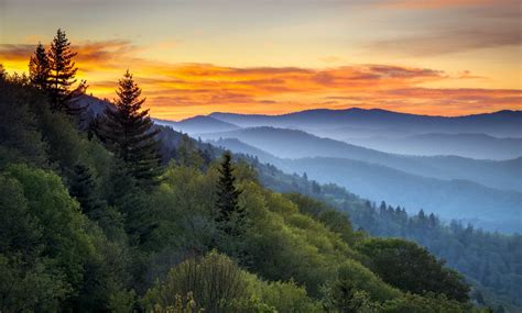 Smoky Mountain Vacation: A Great Smoky Mountains Road Trip