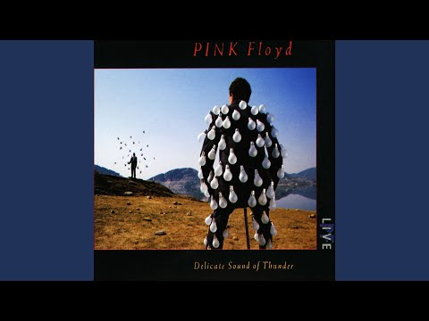 Aponcho Rock: Pink Floyd Delicate Sound of Thunder (divx)