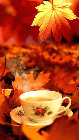Good Morning Autumn Coffee Pictures, Photos, and Images
